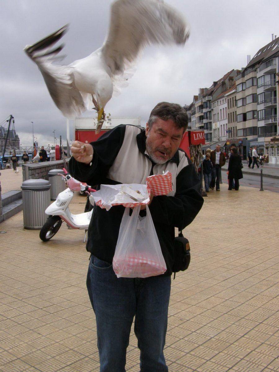 мужчина, птица, еда