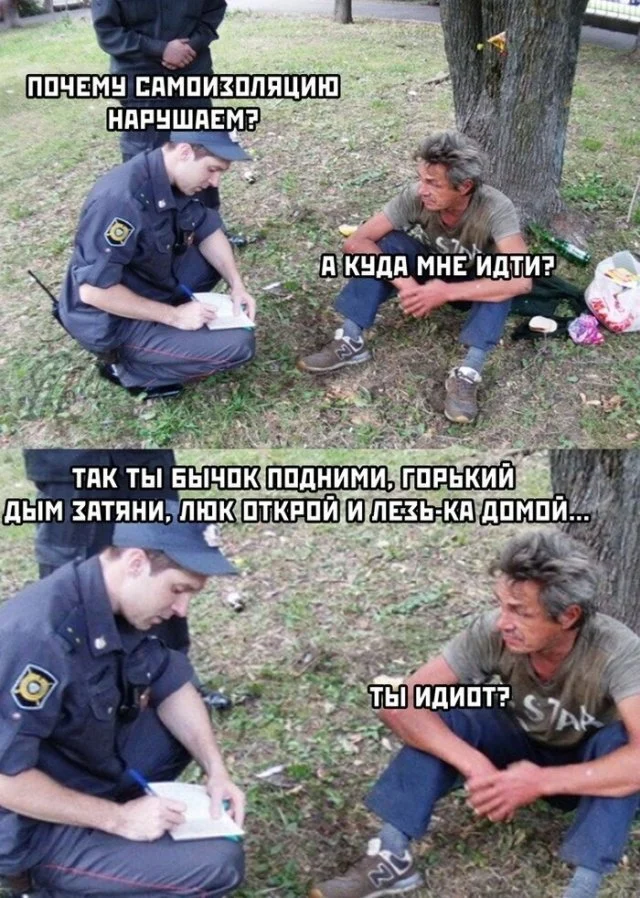 карантин, мемы