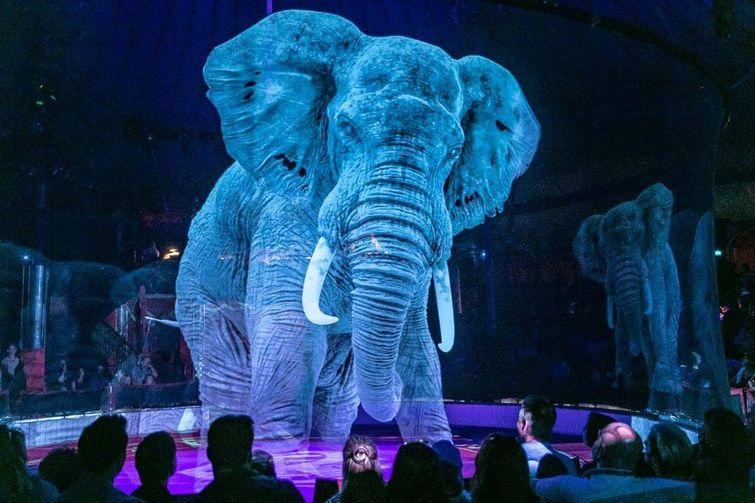 голограмма, цирк, слон