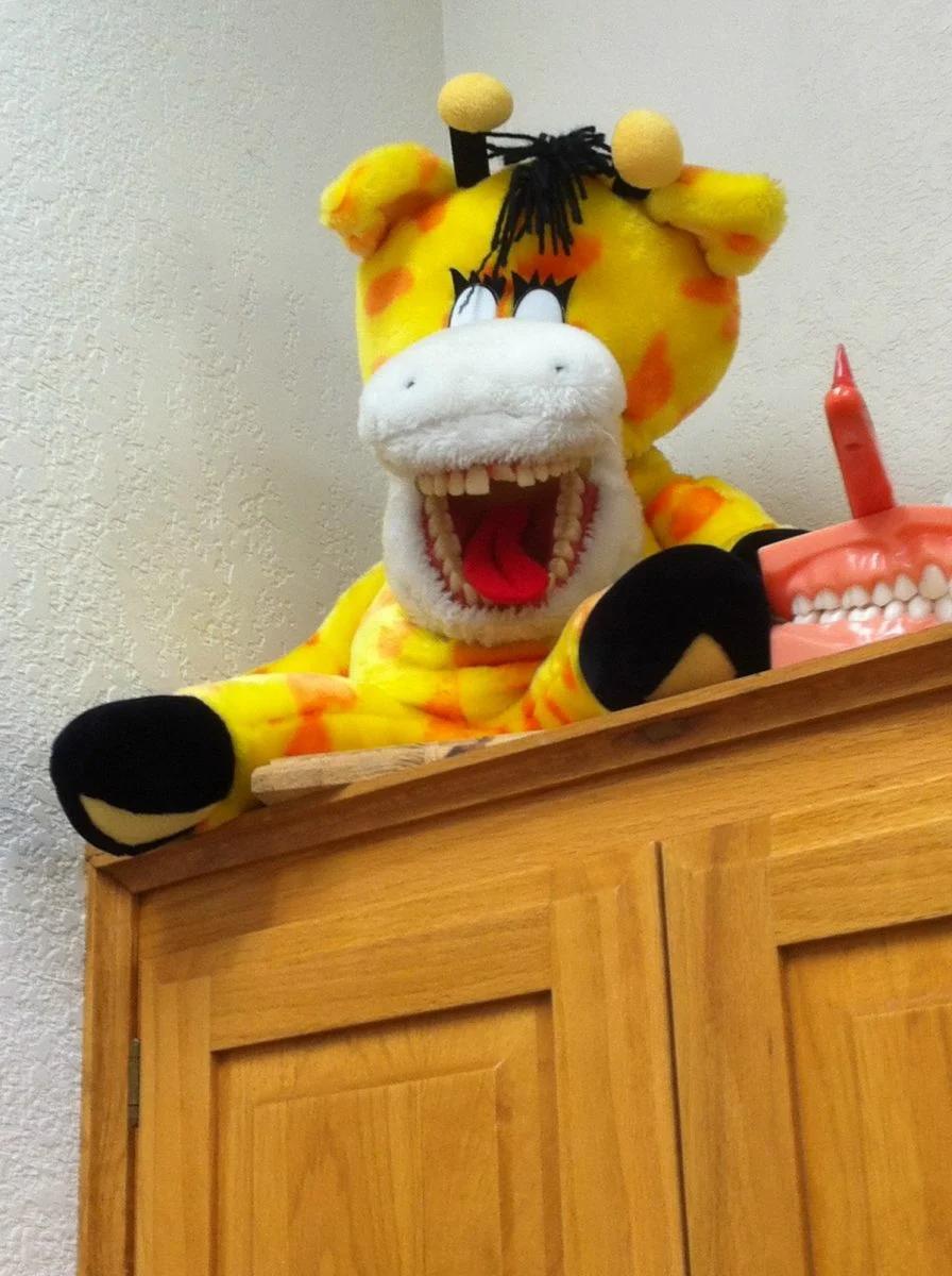 игрушка, зубы