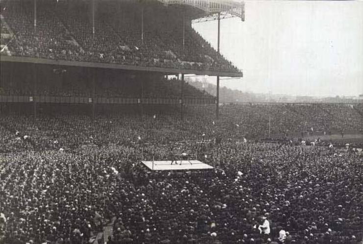 бокс, стадион