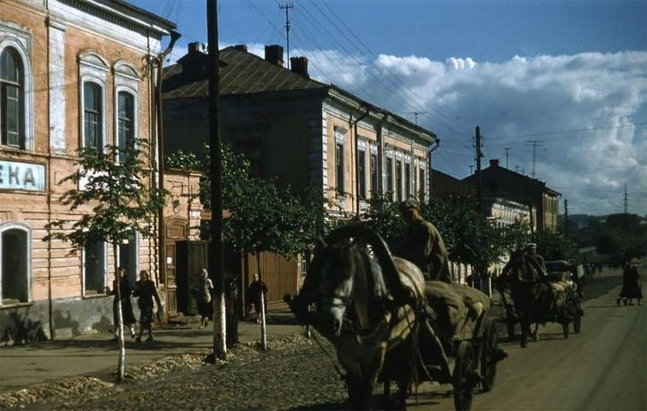 Лошадь и телега в СССР
