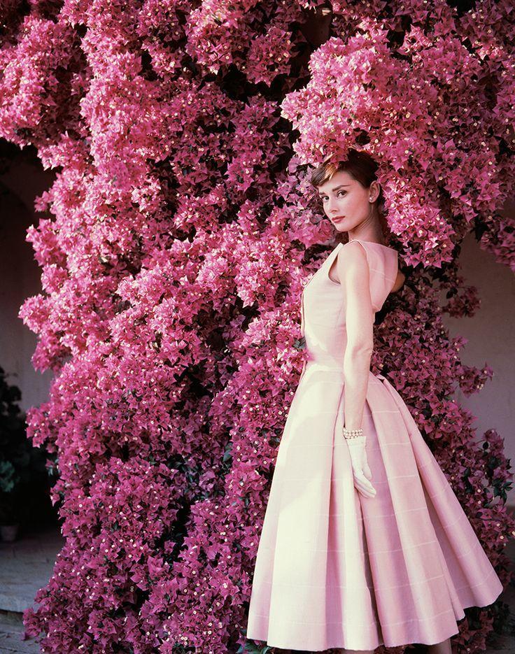 Одри как всегда прекрасна / Фото: ©mixnews.lv