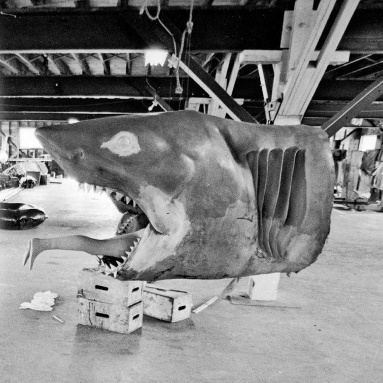 макет акулы