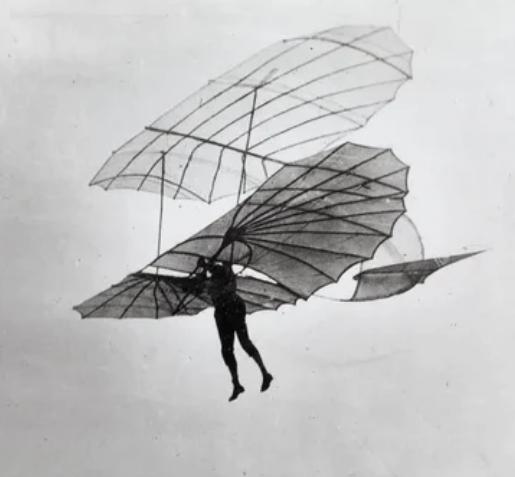 Судьбоносные крылья