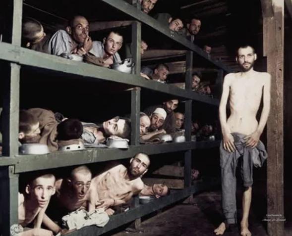 лагерь, камеры, заключенные