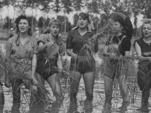 Работницы на рисовых полях, Италия, 1940-е