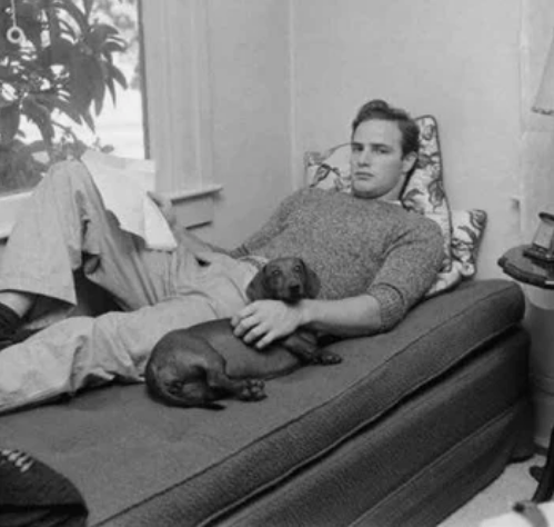 Марлон Брандо отдыхает вместе с четвероногим другом/Фото: ©womensite.mediasole.ru