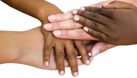 отличия рас