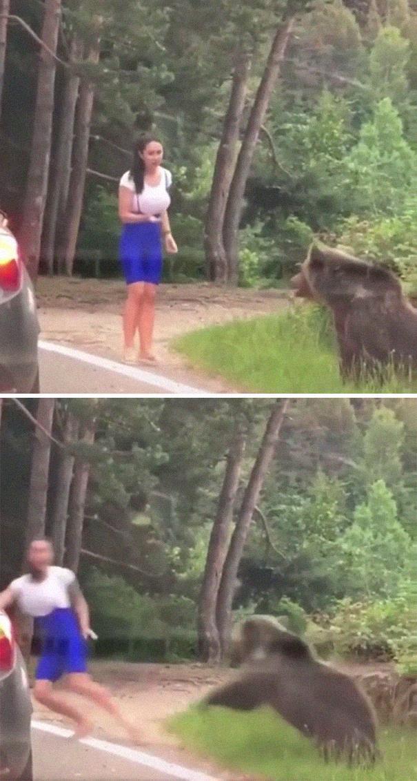 девушка, медведь, нападение, побег