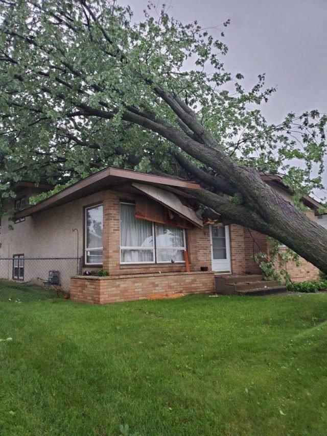 дерево свалилось на дом