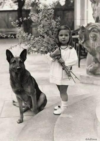 Хельга Геббельс c собакой Адольфа Гитлера