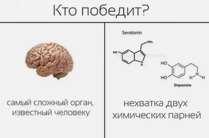 Для отличной работы мозга нужна пара - серотонин и дофамин