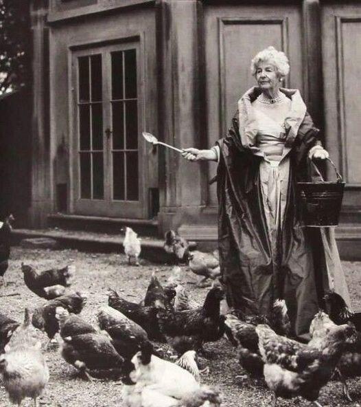 герцогиня, платье, курицы
