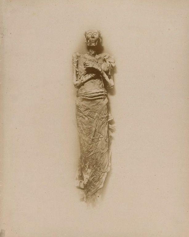 мумия, фараон