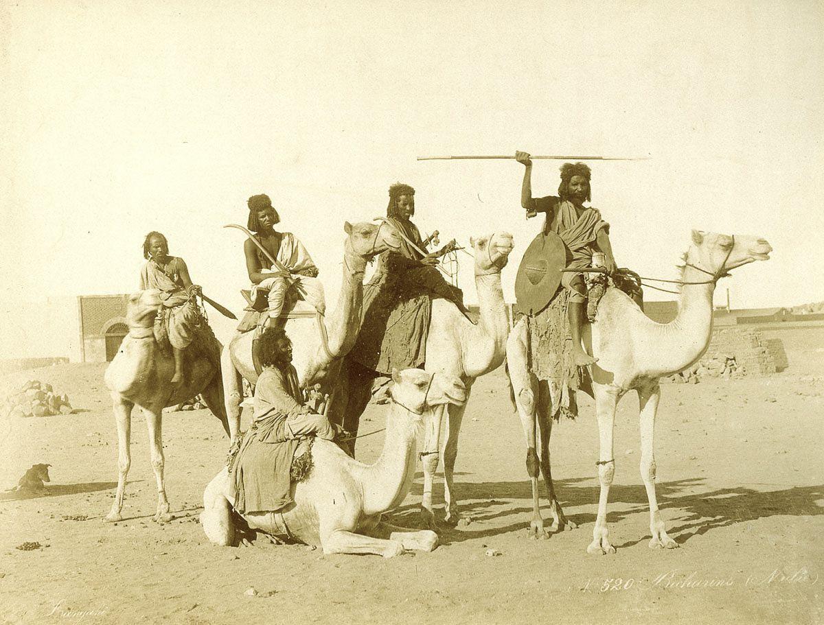 мужчины, верблюды