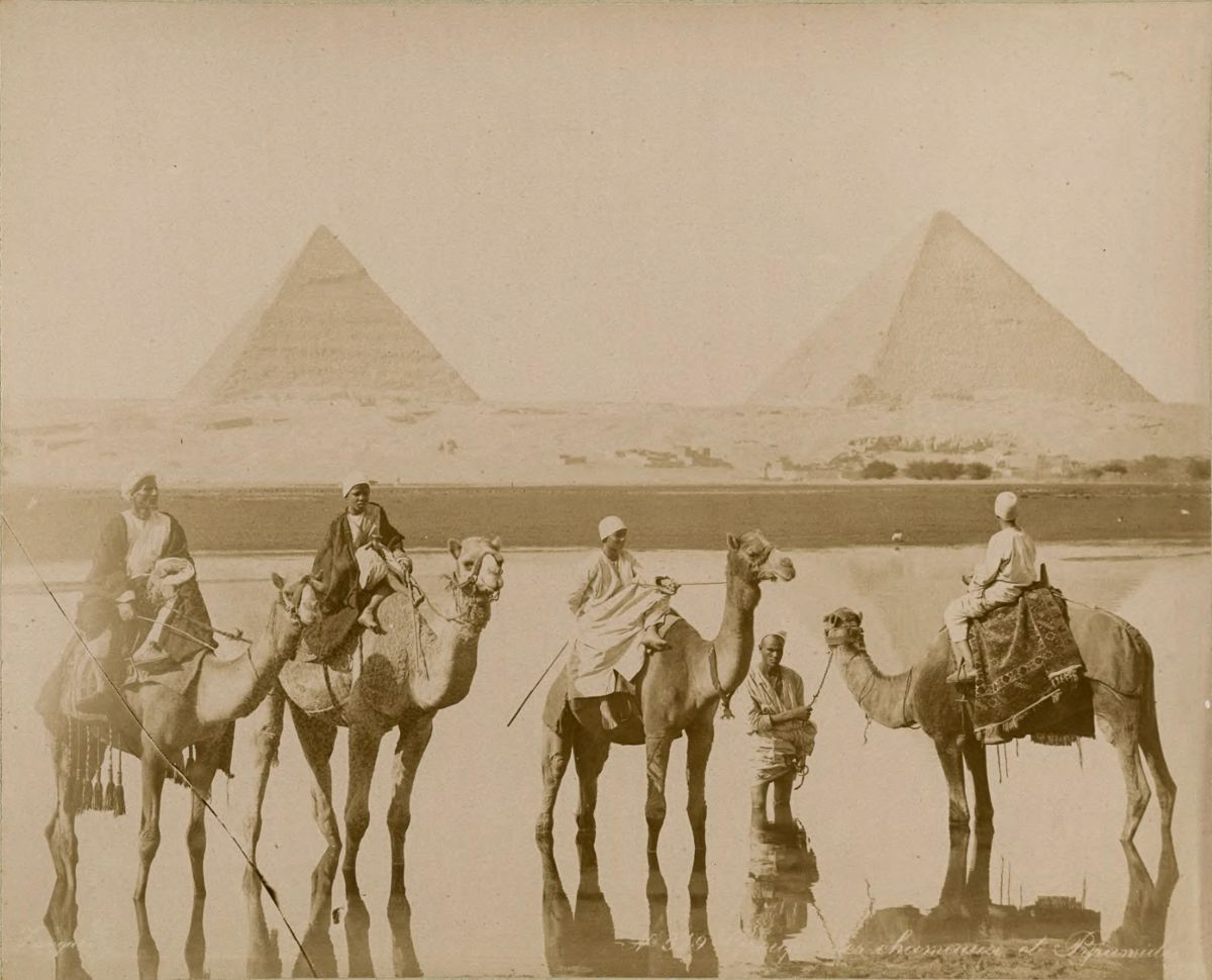 пирамиды, мужчины, верблюды