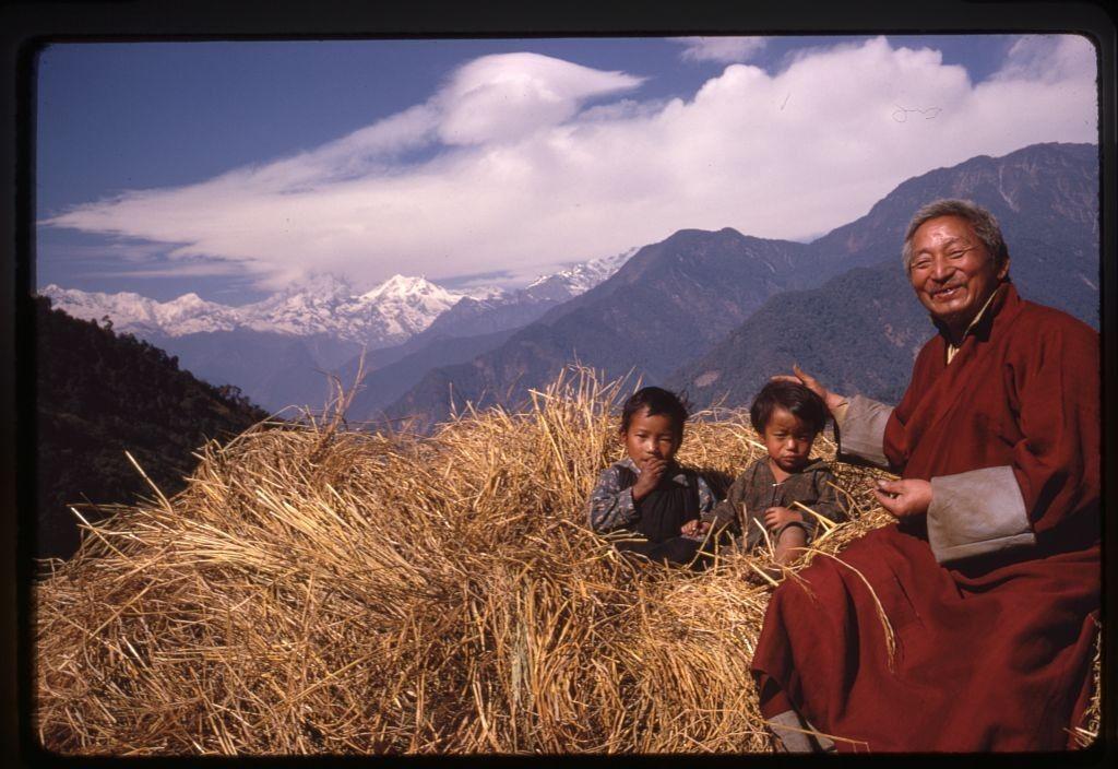 дети, мужчина, сено, горы