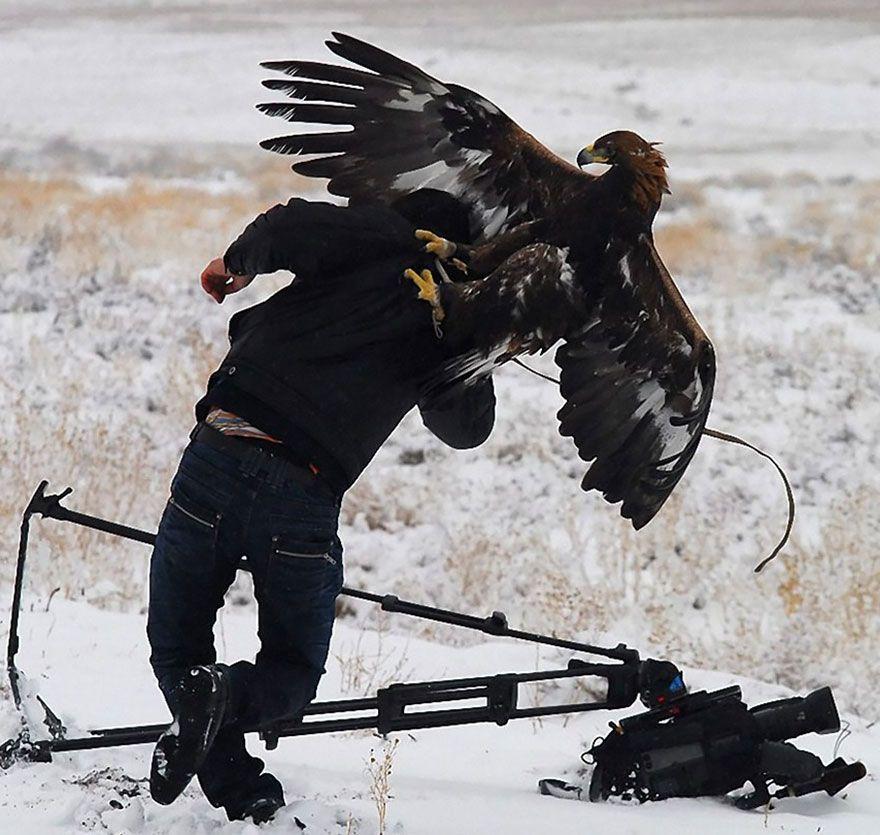 фотограф, орел
