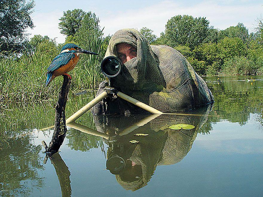 птица, фотограф