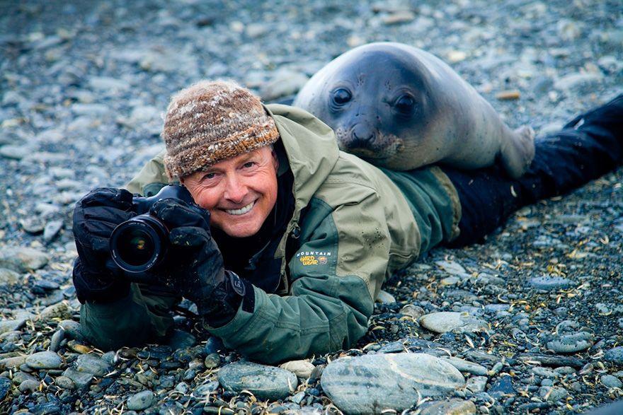 морской слон, фотограф, кадр