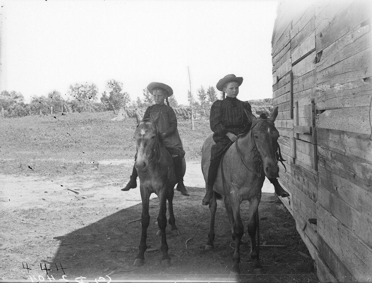 девочки, лошади