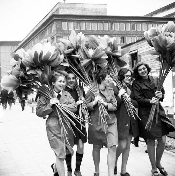 праздник, подготовка, женщины, цветы
