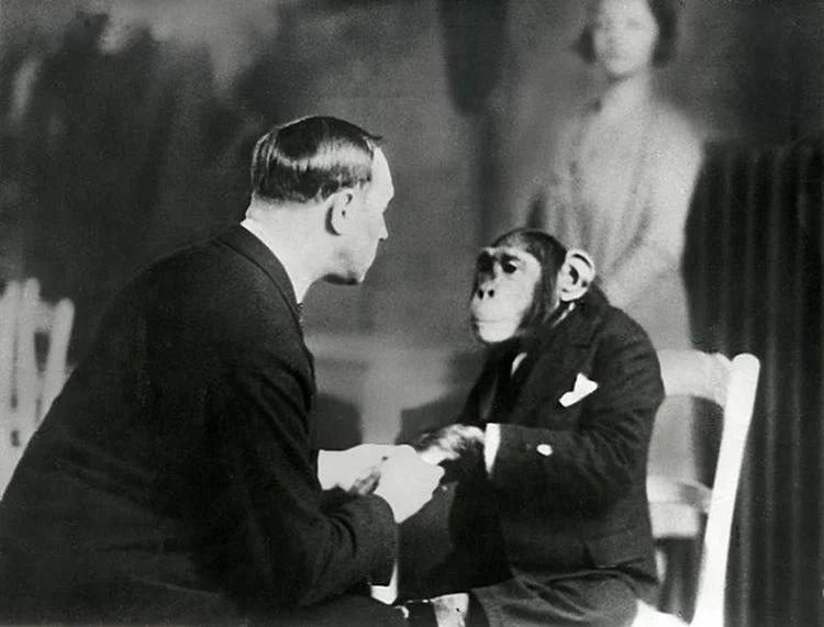 шимпанзе, гипноз