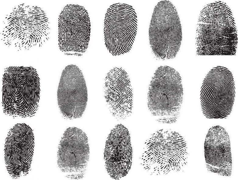 отпечатки, пальцы