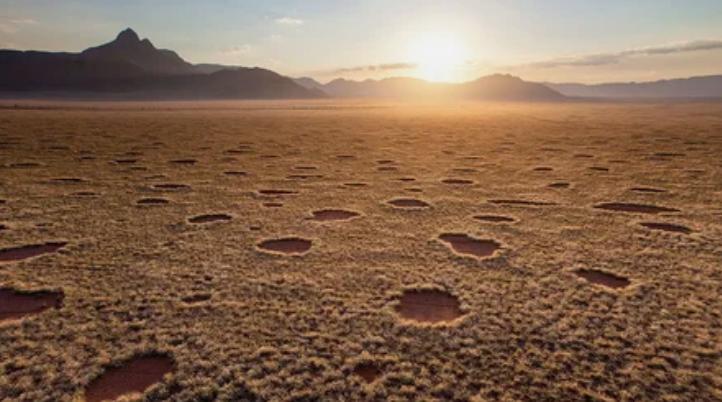 круги, пустыня, Намибия