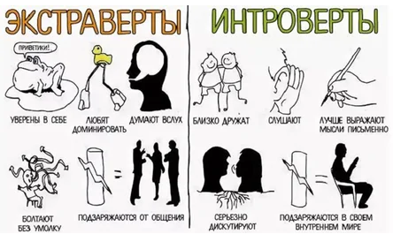 Характеристики интровертов и экстравертов