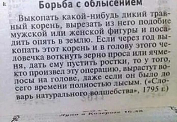 газета, совет