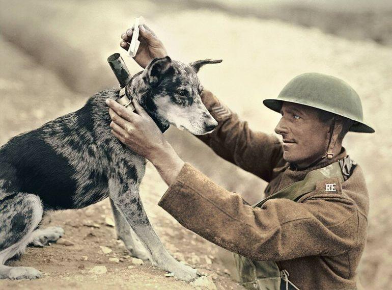 солдат в первую мировую