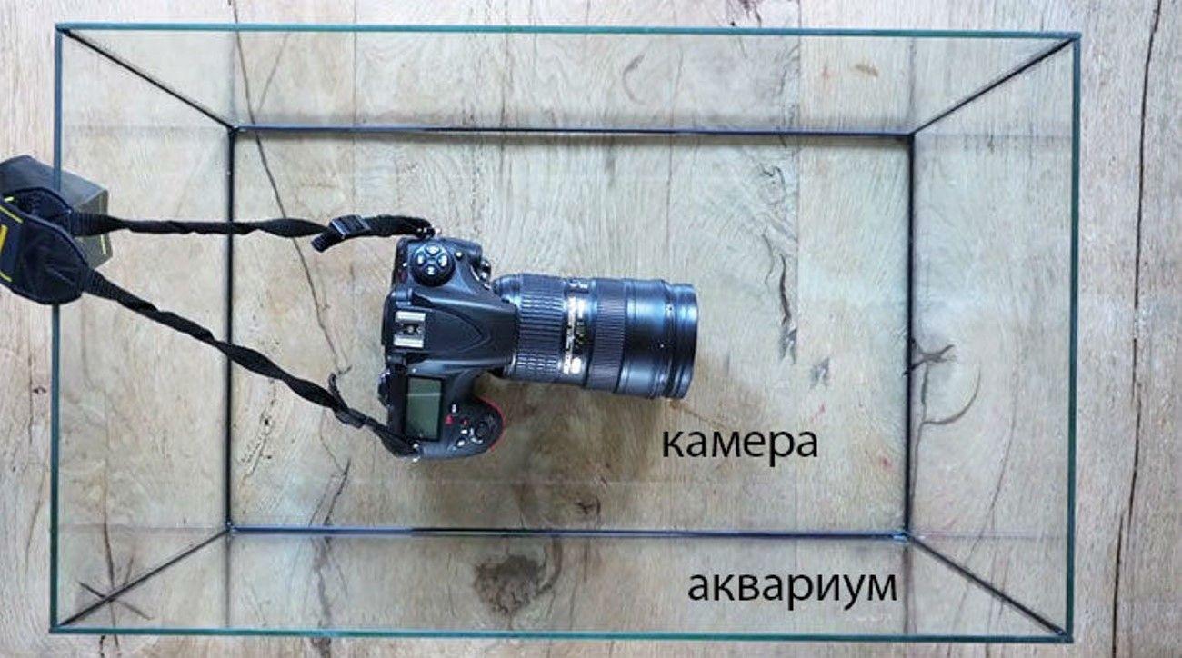 Камера и аквариум