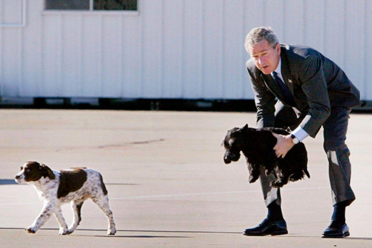 Джордж Буша