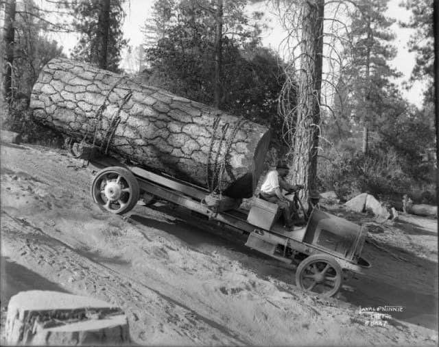 Лесовоз из Калифорнии