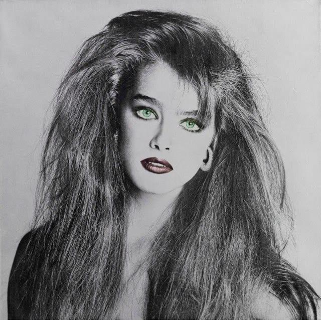 Шилдс, актриса, модель