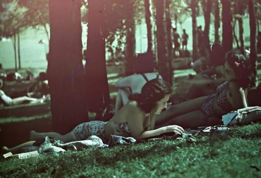 отдых, парк, женщины