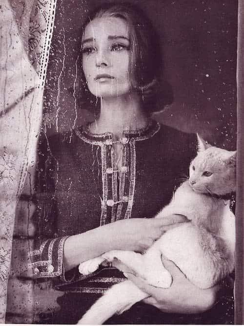 женщина, кот, дождь