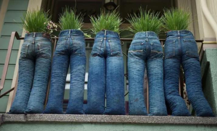 джинсы, растения