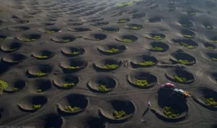 виноградники, вулкан, кратер