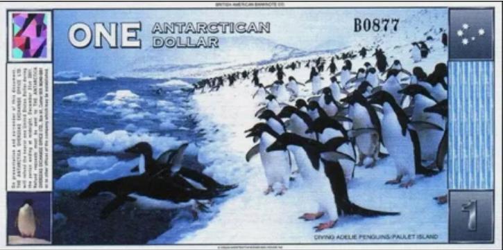 Антарктический доллар обратная сторона