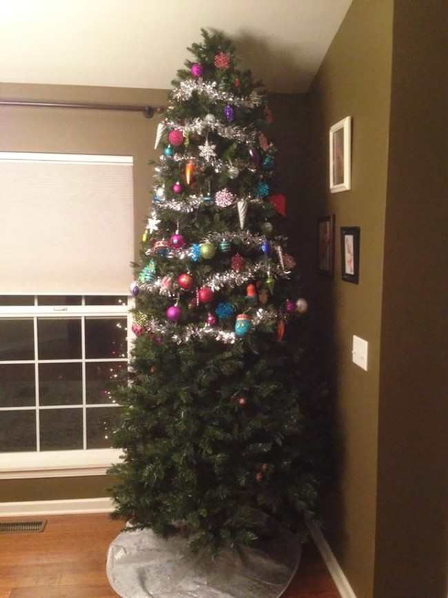 елка, питомцы